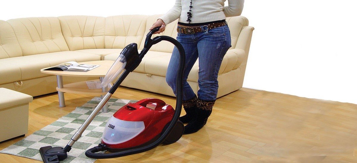 Controlling pests using a vacuum cleaner