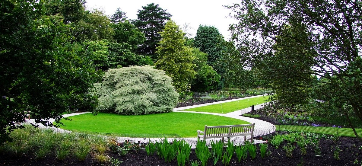 Landscaping Using Ornamental Grasses