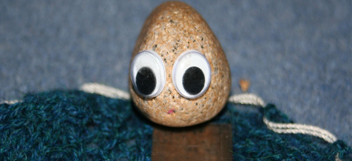 Caring for a pet rock