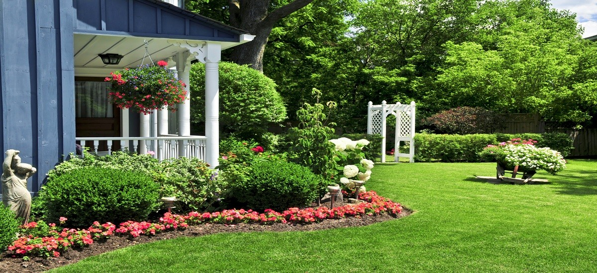 How to plan your yard and beautify your home